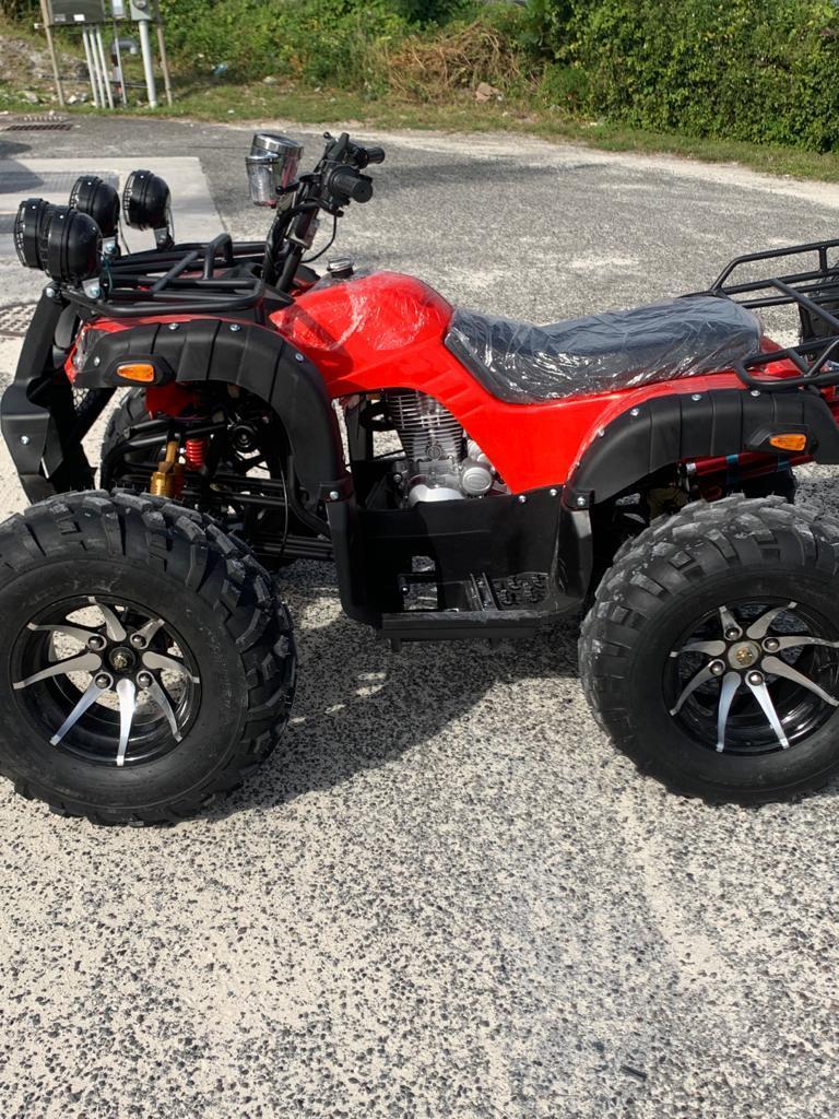 Adult Offroad Quad Bike 250cc