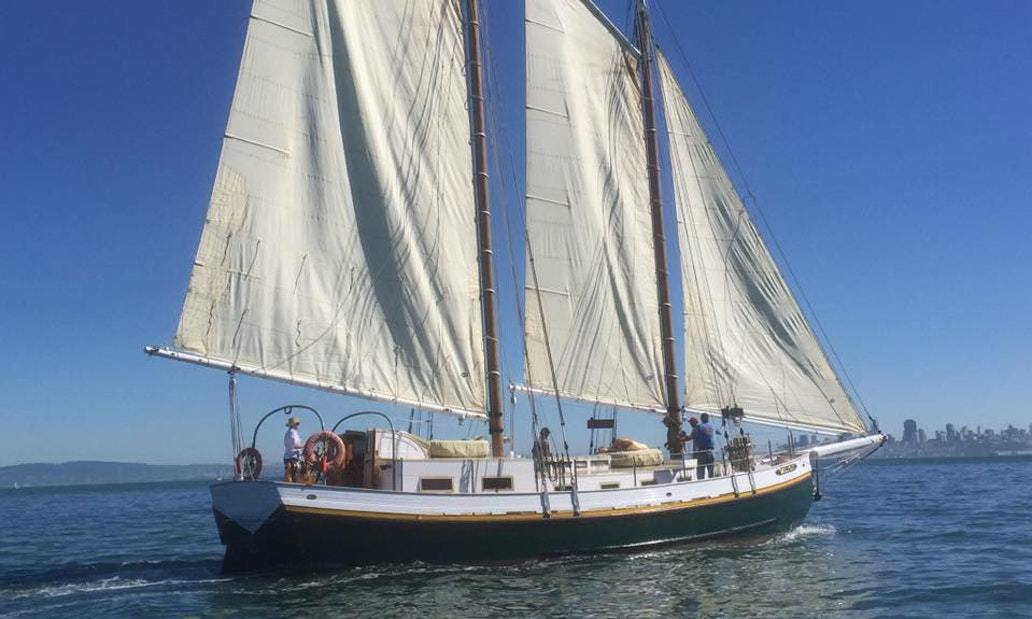 Sailing Charter On 72' Tall Ship Gas Light on SF Bay, Ca- up to 4