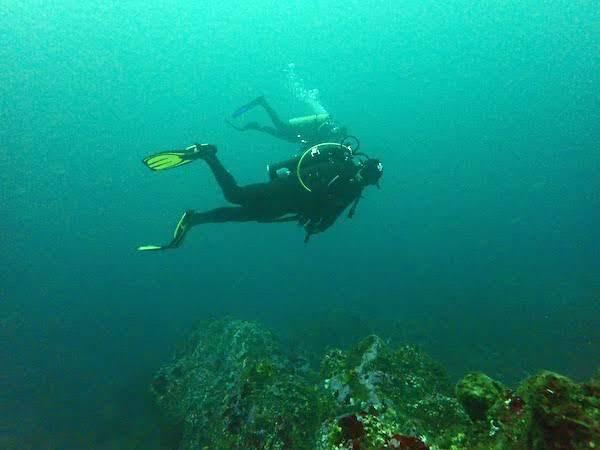 Open Water Diver PADI en Algarrobo