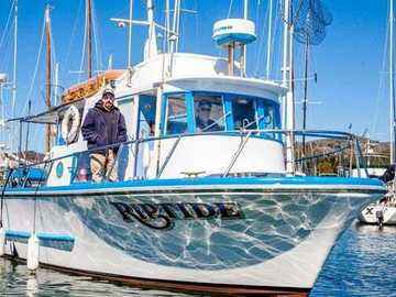 Yachts: Whale Watching for Beginners and Individuals