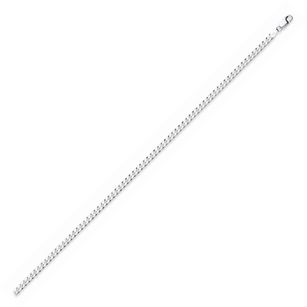 Selling: Silver Curb Anklet