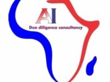 Consultation: Africa Intelligence