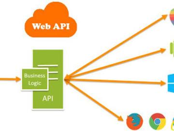 Consultation: Security in Web API