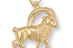 Y/G Capricorn Zodiac Pendant