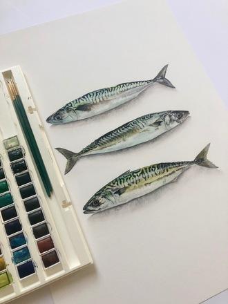 Selling: Watercolour Mackerel Print