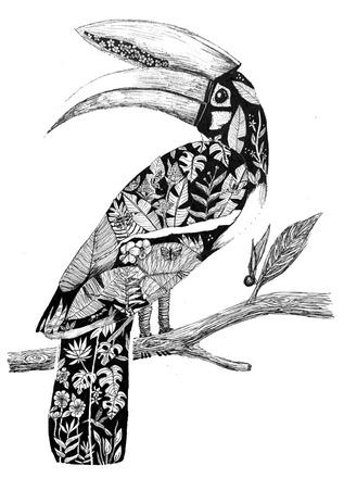 Selling: Hornbill Habitat