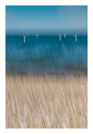 Selling: Whitstable - Horizons II - A3 Giclée Print
