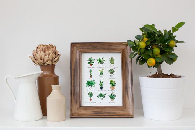 Selling: 'Pot Plants' Watercolour Print