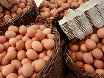 Sell: Local Organic Eggs