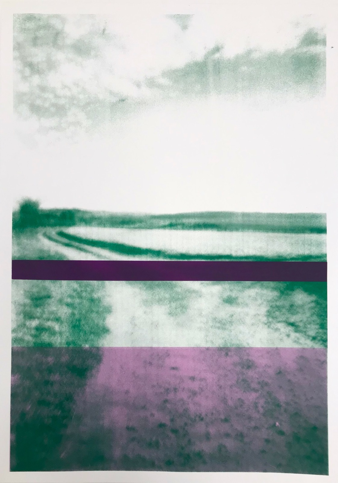 The Gallops: Green with Purple Bands