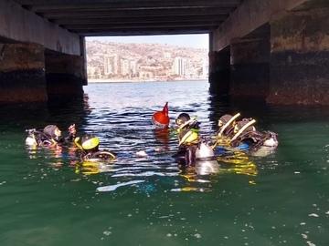Curso: PADI Dive Master en Valparaíso