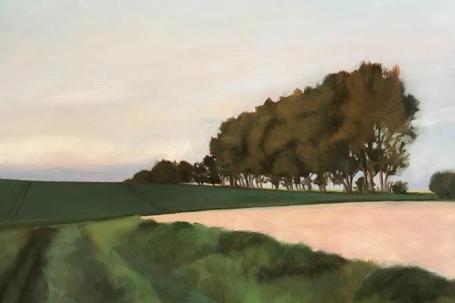 Selling: Early Morning Fields
