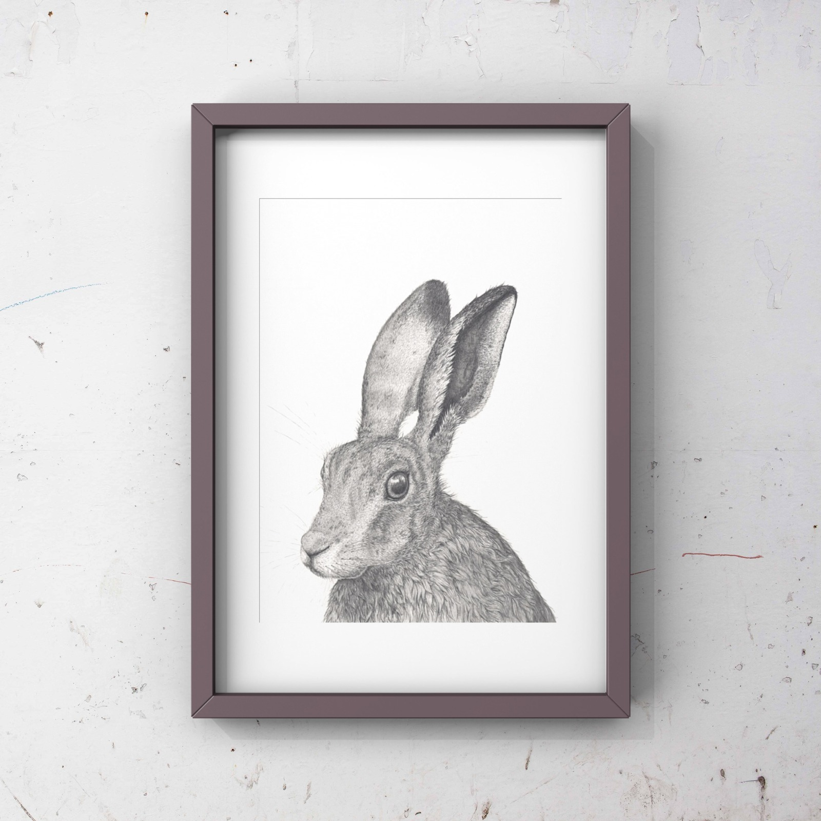 Bleaklow hare