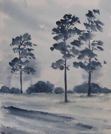 Selling: Tall Trees