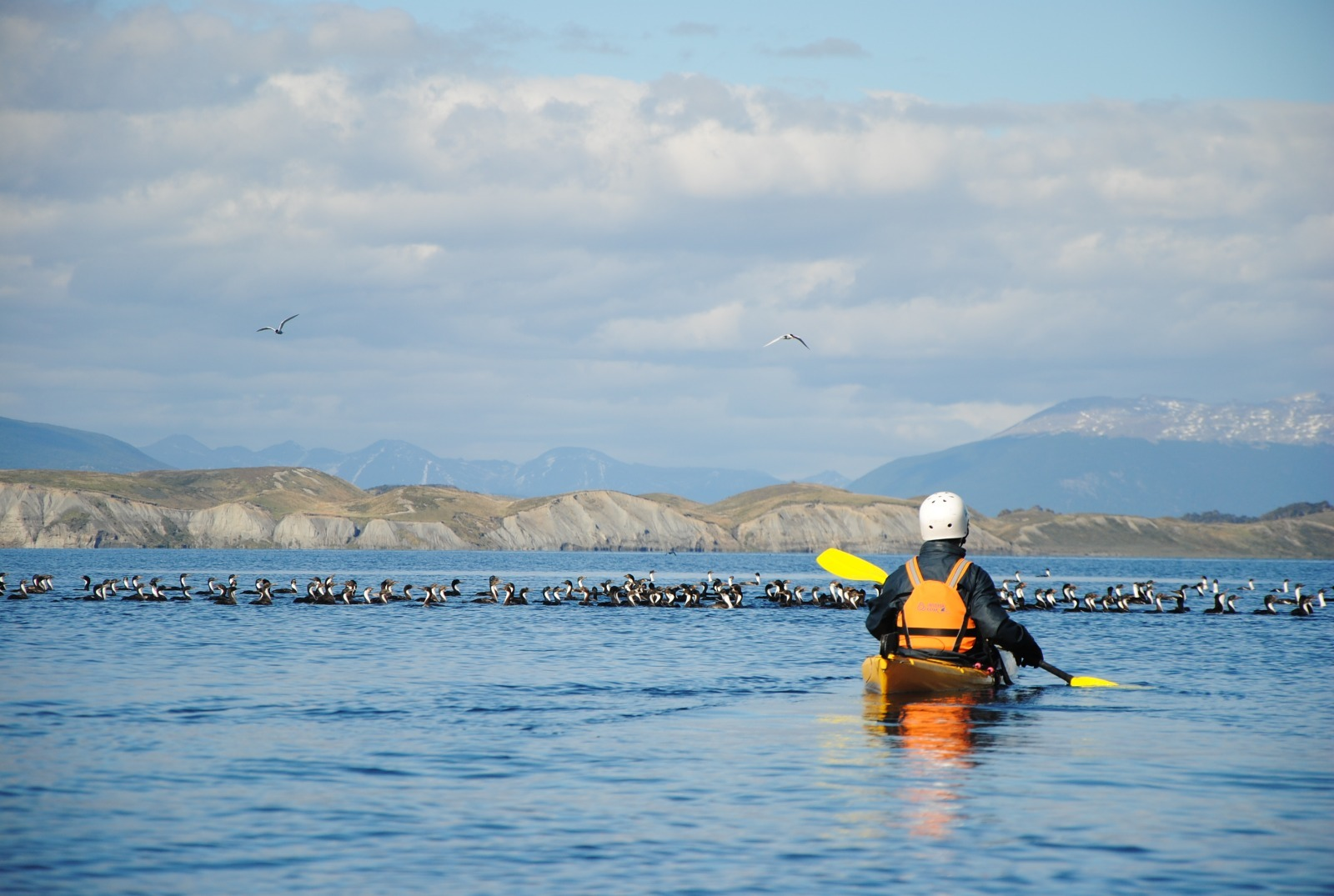 Kayak de mar en Canal Beagle