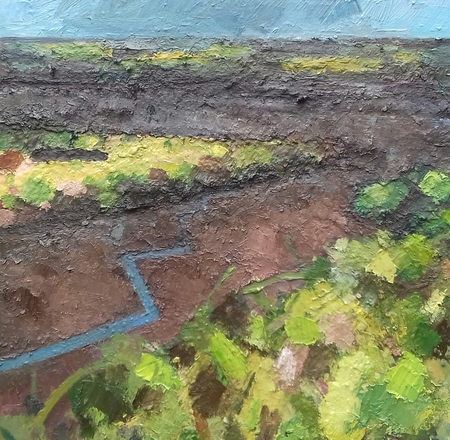 Selling: Saltmarshes near Wells next to sea