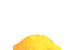 Selling: Lemon