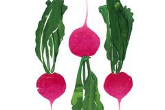 Selling: Turnip