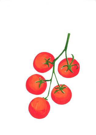 Selling: Vine tomatoes