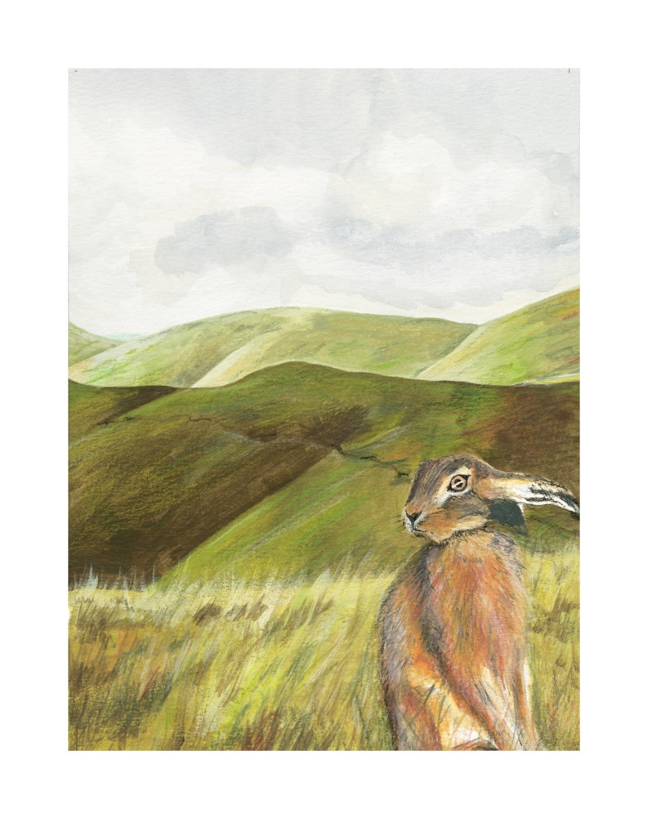 Hare Waiting