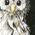 Selling: Curious Bird