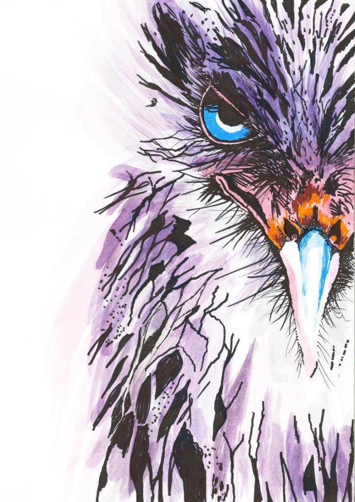 'Scruffy Bird'