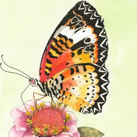 Selling: 'Butterfly Beauty'