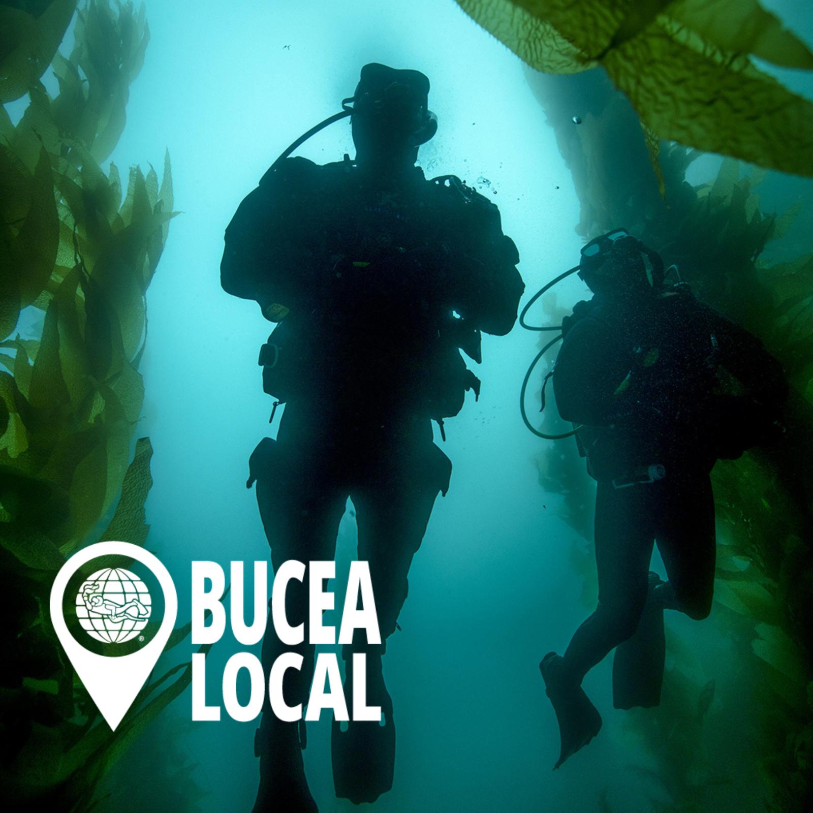 Curso de Buceo Open Water Diver E-learning