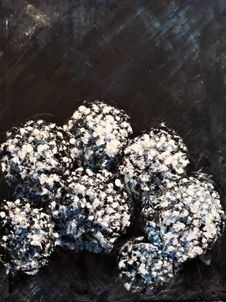 Selling: Night Blooms