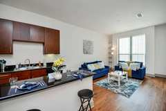 Renting out with online payment: ★ Livin n Luxury in Upscale Houston Home ★ WiFi ★