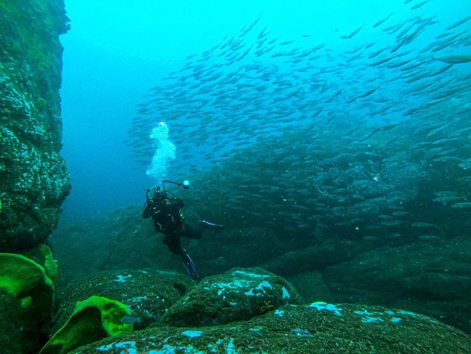 Curso de Buceo PADI Advanced Open Water Diver en Pichidangui