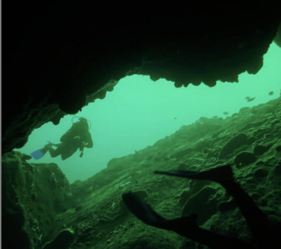Buceo Autónomo Guiado en Isla Damas