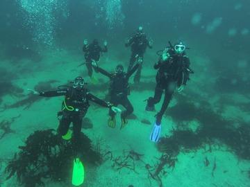 Experiencia: Bautismo submarino - Iniciación de buceo en Quintay