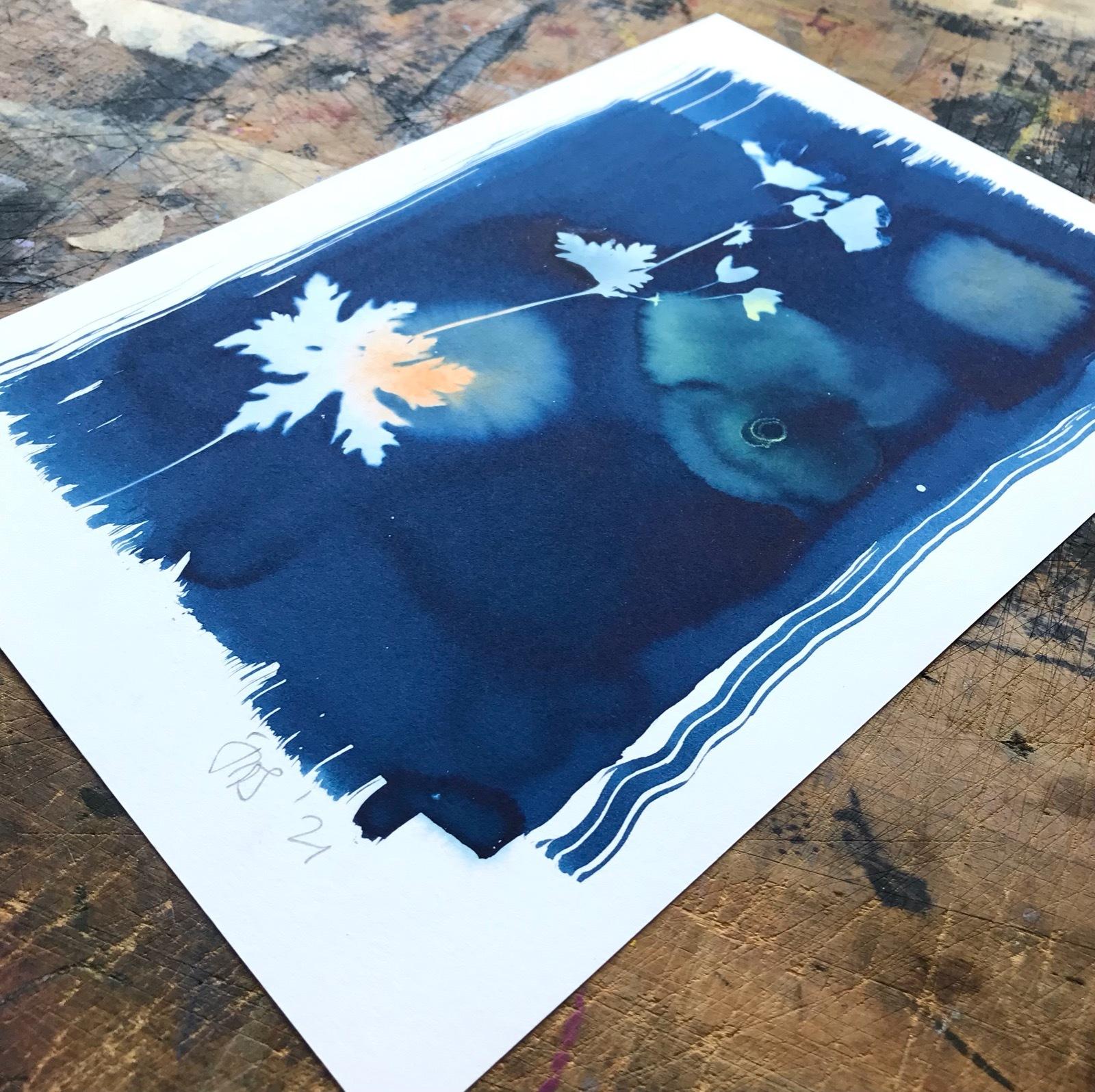 Cyanotype with Cranesbill 2