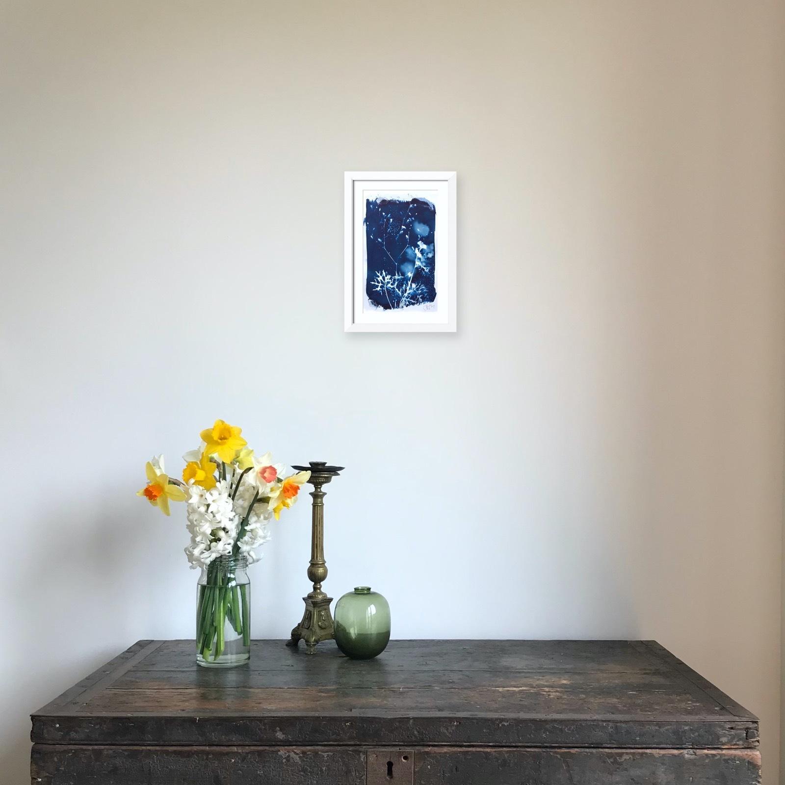 Cyanotype with meadow flowers 6