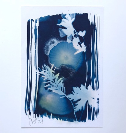 Cyanotype with Cranesbill and Yew 5