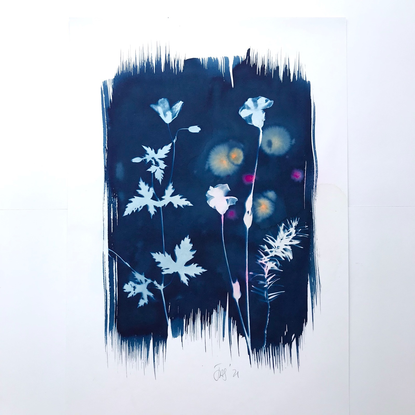 Cyanotype with Cranesbill and Yew 13