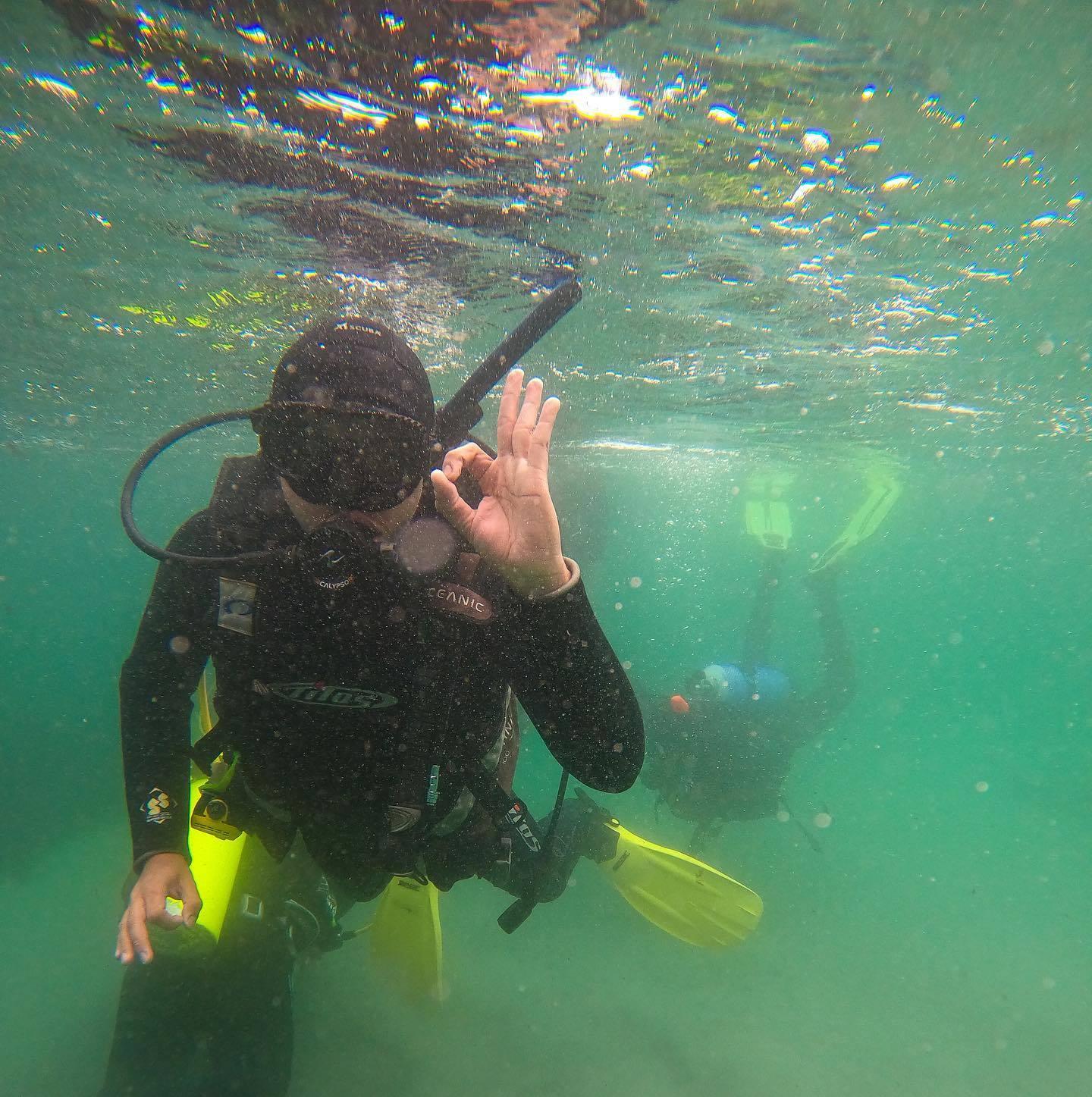 Curso PADI Open Water Diver en Antofagasta