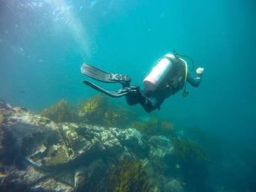 Experiencia: Bautizo de buceo en la Isla Santa María, Antofagasta