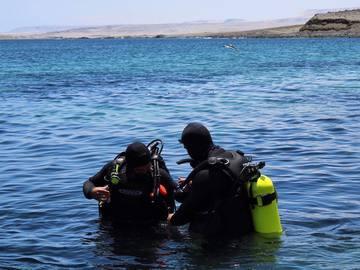 Curso: Curso PADI Rescue Diver en Antofagasta