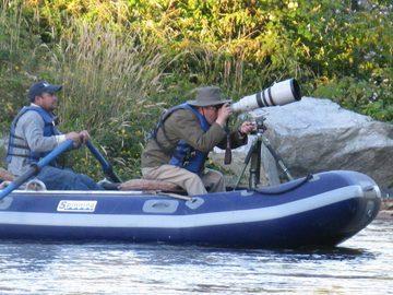 Experiencia: Avistamiento de Aves en río Liucura, Pucón