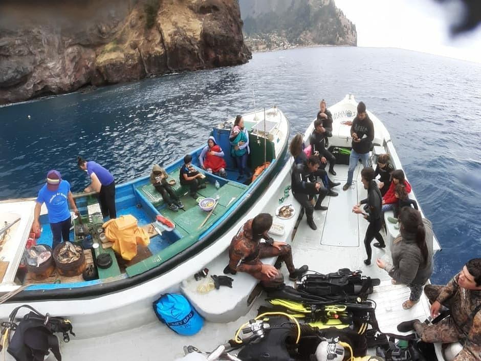 Snorkeling con Lobos Marinos en Juan Fernández
