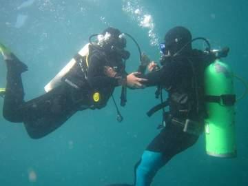 Curso: Curso PADI Rescue Diver en Quintay