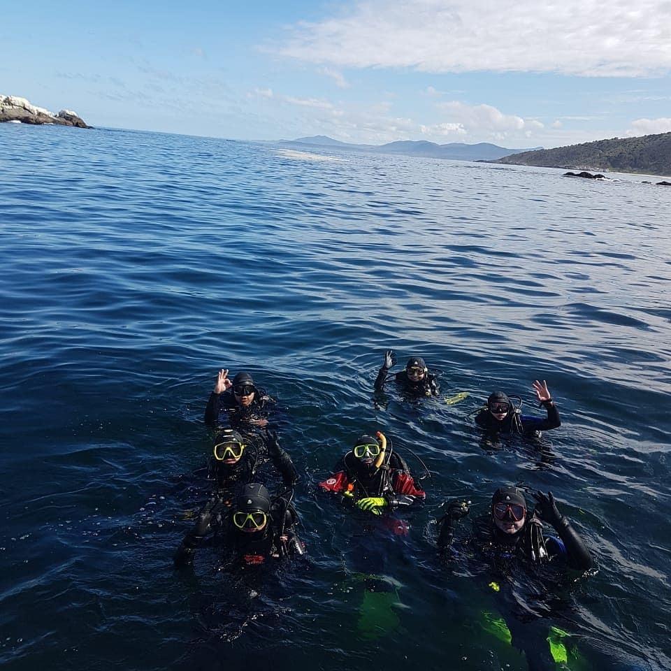 Curso PADI Rescue Diver en Papudo