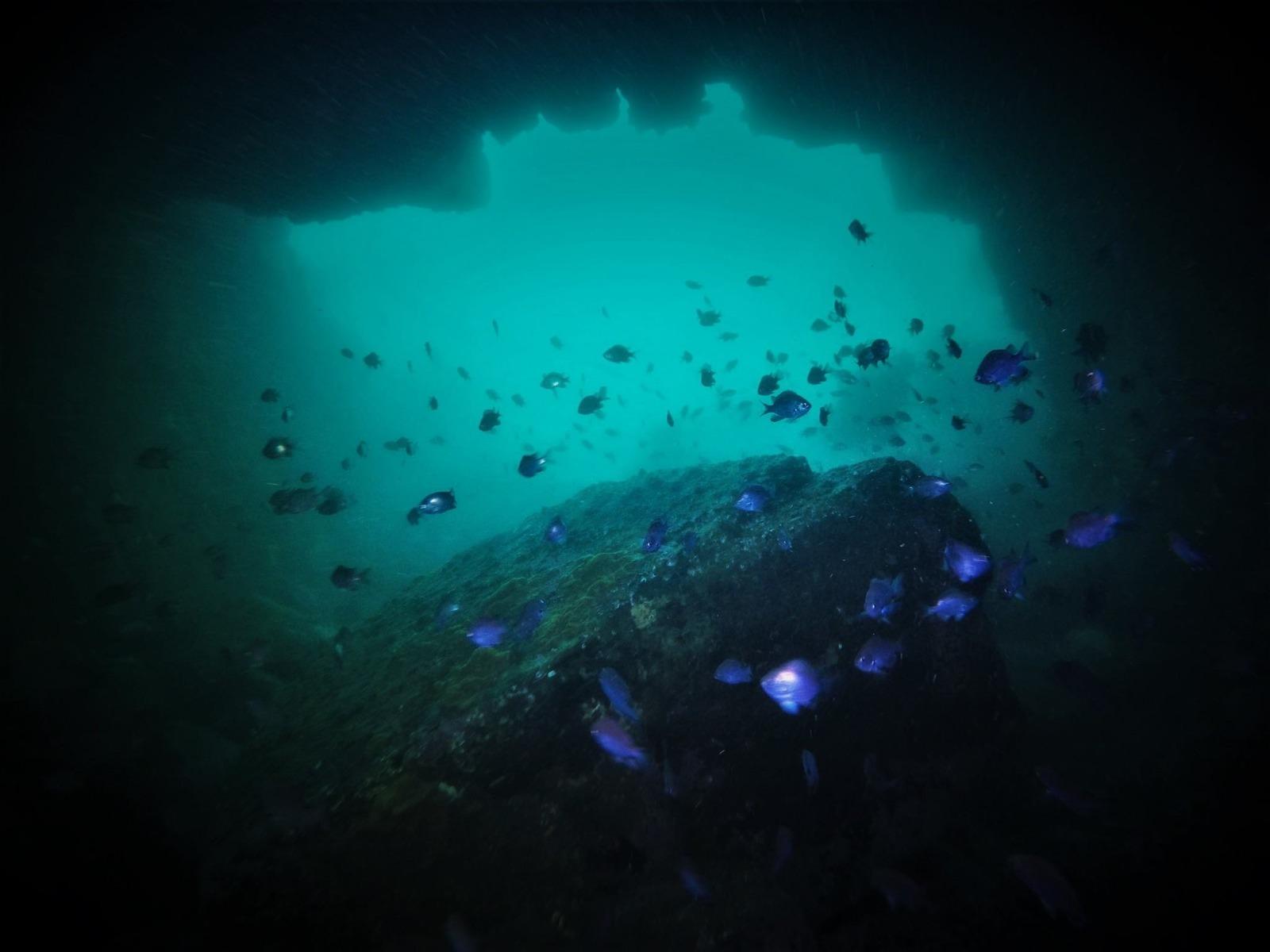 Curso PADI Deep Diver en Algarrobo