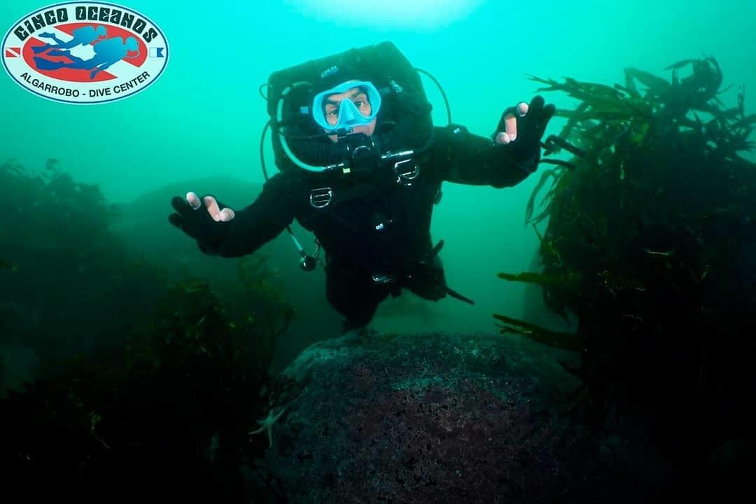 Curso PADI Rebreather Diver en Algarrobo