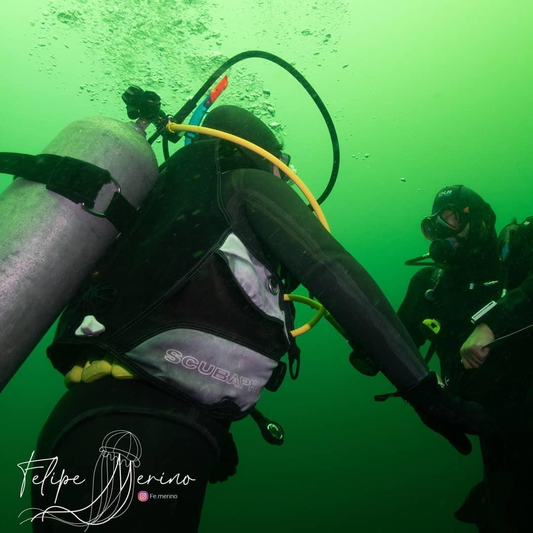 Curso PADI Rescue Diver en Algarrobo