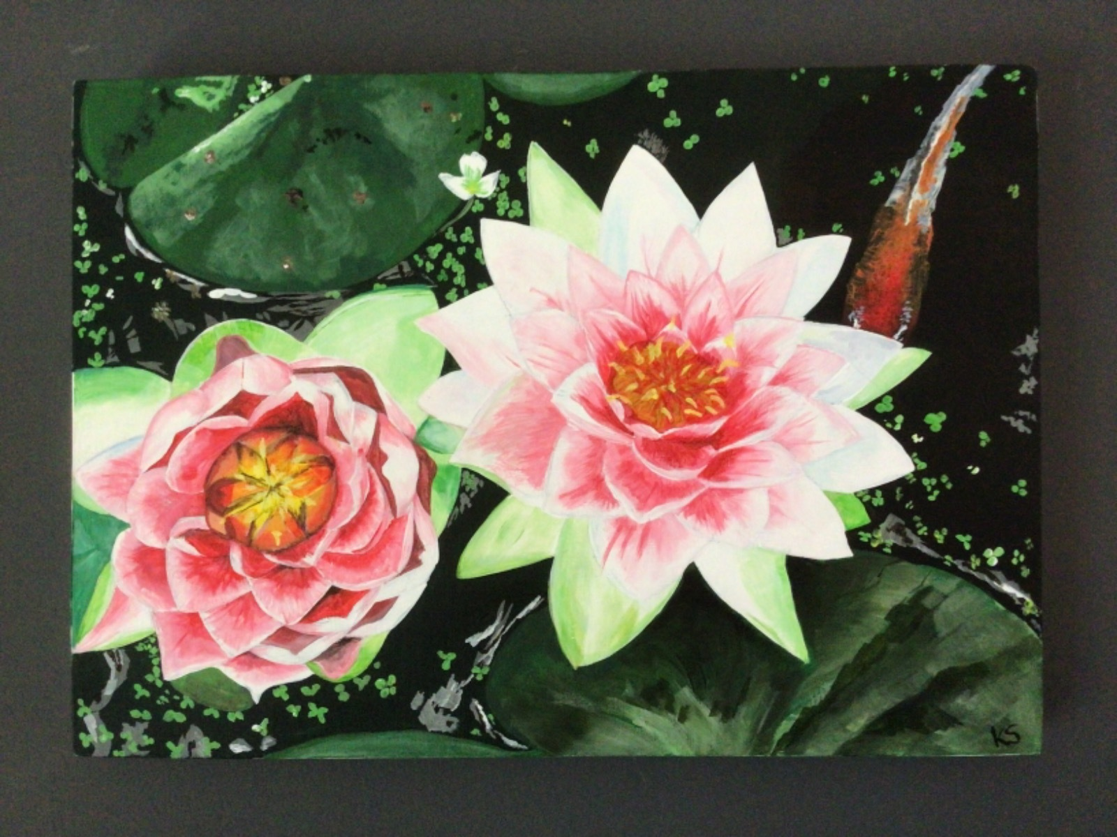 'Water Lilies'