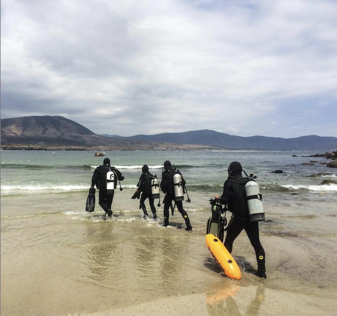 Curso PADI Open Water Diver en Los Molles