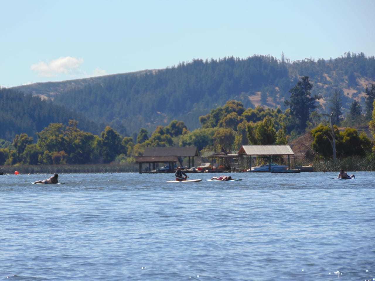 Arriendo de Stand-Up Paddle por hora en Vichuquén